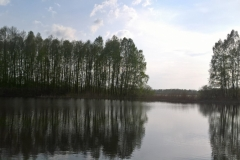 Jezioro - panorama